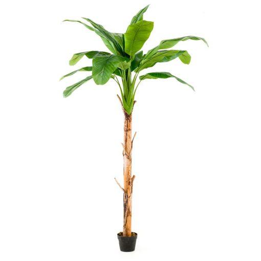 ARBRE PLATANERO Plante artificielle décorative arbre platane. 15 feuilles artificielles. Tronc naturel. pot inclus. Dimensions: hauteur 215 cm