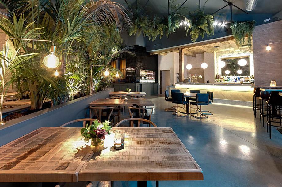 4 plantes faciles d'entretien pour donner un look sauvage à votre restaurant | MisterWils, furniture for free souls, industriel, scandinave, vintage...