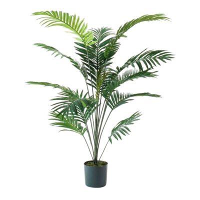ARBRE PALMERA DELUXE Plante artificielle décorative, arbre palmier, finition Deluxe | Trouvez-la chez MisterWils. Plus de 4000m² d'exposition.